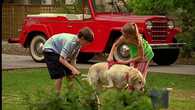 two children hose and wash a dog in a yard. - kamerafahrt mit dolly stock-videos und b-roll-filmmaterial