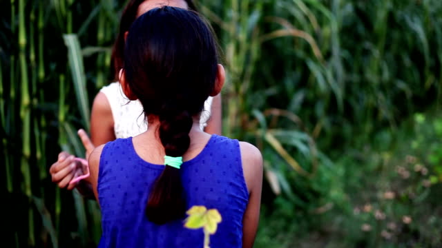 two children teasing little girl outdoor in the nature - teasing stock videos and b-roll footage