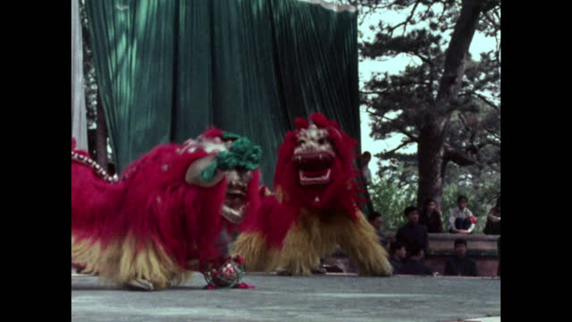 two chinese lions play together on stage in beijing; 1973 - animal representation stock videos & royalty-free footage