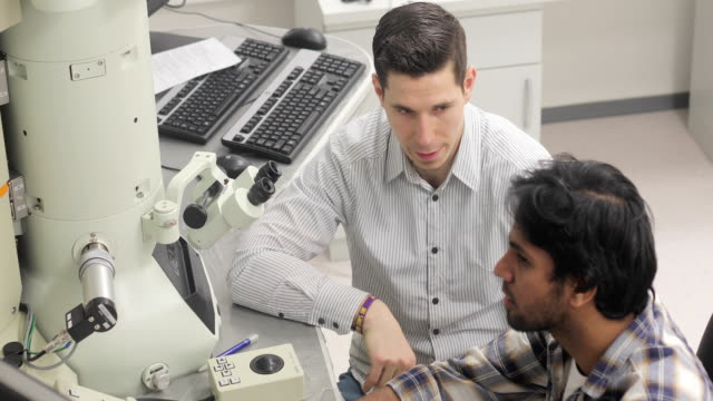 due ricercatori di colleage che esaminano il campione scientifico al computer e discutono - microscopio elettronico a scansione video stock e b–roll