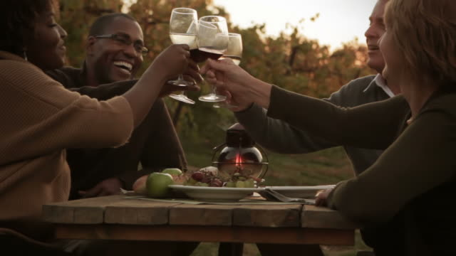 Two couples in vineyard celebrating with wine