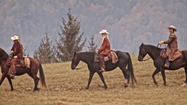TS Two cowboys and a cowgirl riding horse on mountain