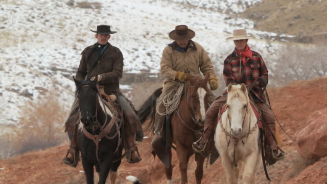 vídeos de stock e filmes b-roll de ms two cowboys and a cowgirl riding horses with their dogs and snow in the background / shell, wyoming, united states - grupo pequeno de animais