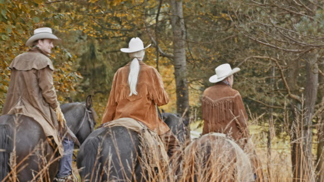 vidéos et rushes de poêle deux cow-boys et cow-girl à cheval sur la route de campagne - medium group of animals