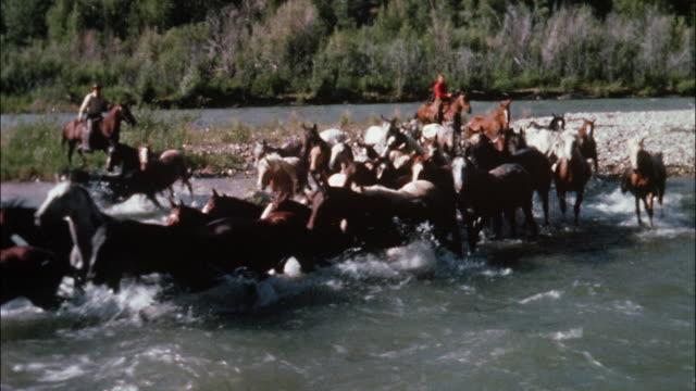 Two cowboys on horseback herd wild horses through a river.
