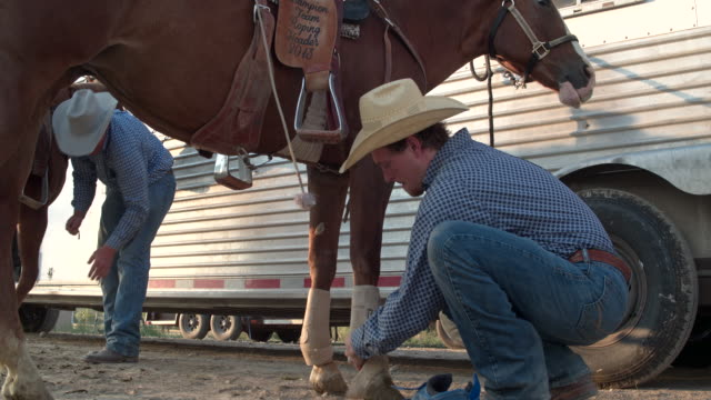 two cowboys preparing their horses to horseback riding in utah, usa - rodeo stock videos & royalty-free footage