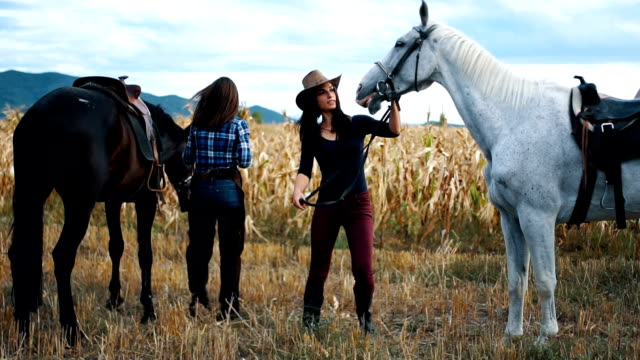 two cowgirl with their horses - animal harness stock videos and b-roll footage