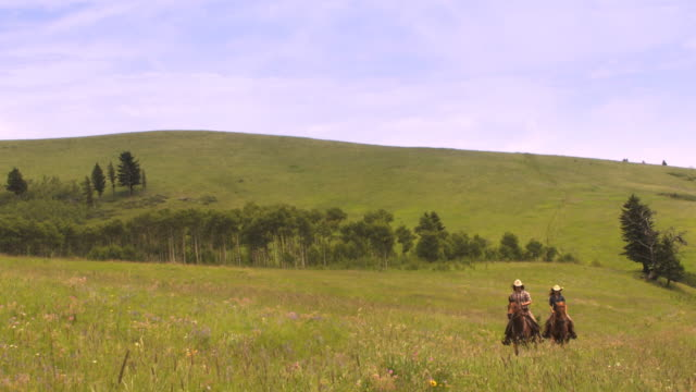 two cowgirls in the country - wide shot stock videos & royalty-free footage
