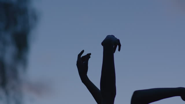 two dancers dancing with arms up in nature - human arm stock videos & royalty-free footage