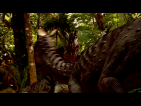 cgi, two dinosaurs fighting in jungle  - eoraptor stock videos and b-roll footage