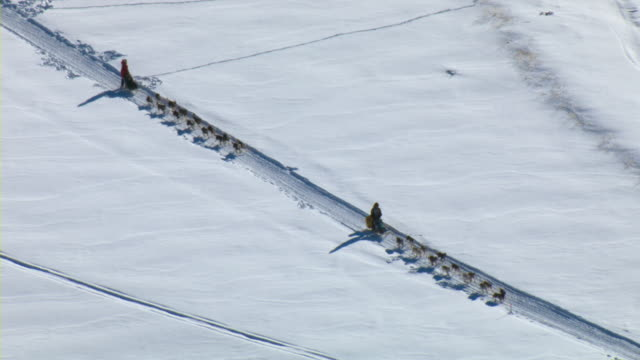 Two dogsled teams race across the winter landscape during the Yukon Quest sled dog race in Canada.