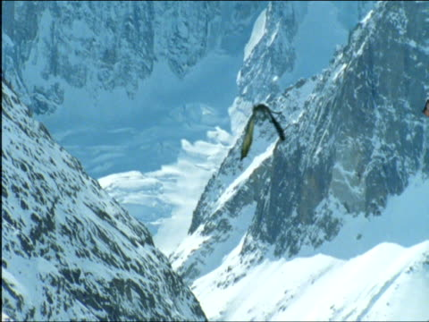 vídeos de stock e filmes b-roll de two dragons fly over snow-covered mountains in a mating ritual. - fantasia