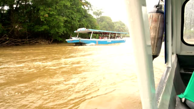 two editorial wide shots of tourists on a boat river tours in costa rica. central america, the americas. with original sound. also available in 4k... - editorial stock videos & royalty-free footage