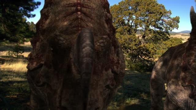 CGI, CU, PAN, Two Einiosauruses eating foliage from tree, headshot