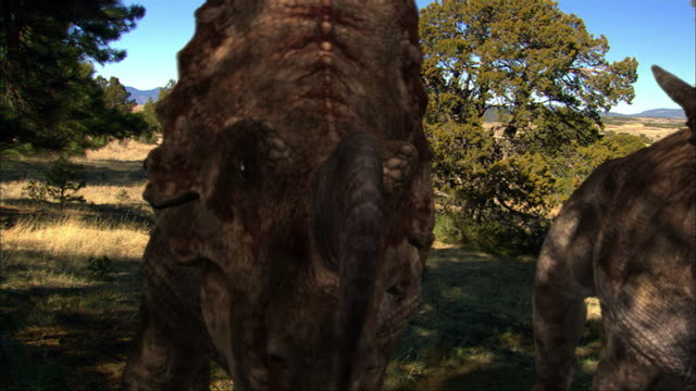 CGI, CU, PAN, Two Einiosauruses, headshot