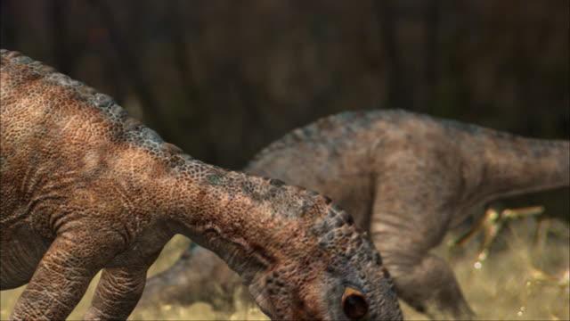 CGI, CU, SELECTIVE FOCUS, Two Eoraptors feeding in field