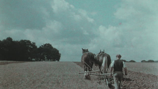 vidéos et rushes de 1938 ws two farmers preparing their fields with horse drawn plows / united kingdom - 1930