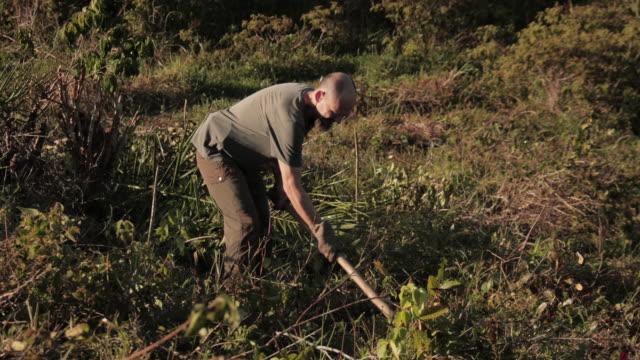 ブラジルの畑で働く2人の農家 - digging点の映像素材/bロール