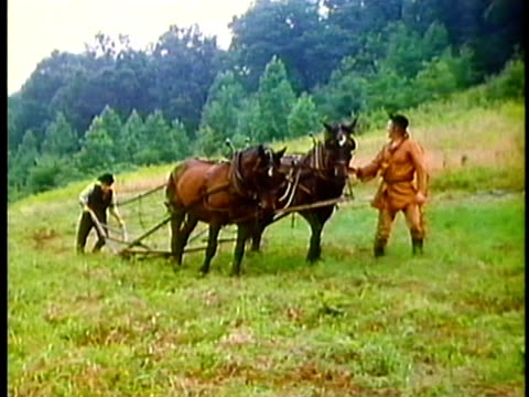 1962 reenactment ws pan two farmers working with a horsedrawn plough in 19th century mississippi  - pflug stock-videos und b-roll-filmmaterial