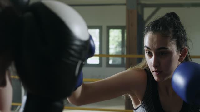 vídeos de stock, filmes e b-roll de dois pugilistas femininas boxe no ringue de boxe - posição de combate