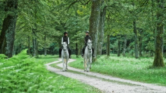 兩個女性朋友享受騎白馬在森林裡 - 少於10秒 個影片檔及 b 捲影像