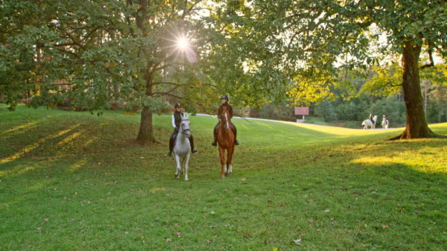 slo mo two female friends riding horses in orchard - recreational horseback riding stock videos & royalty-free footage