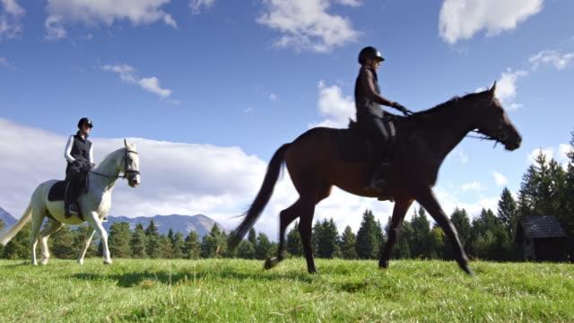 vidéos et rushes de ds deux amies leur cheval dans la prairie de montagne - monter à cheval