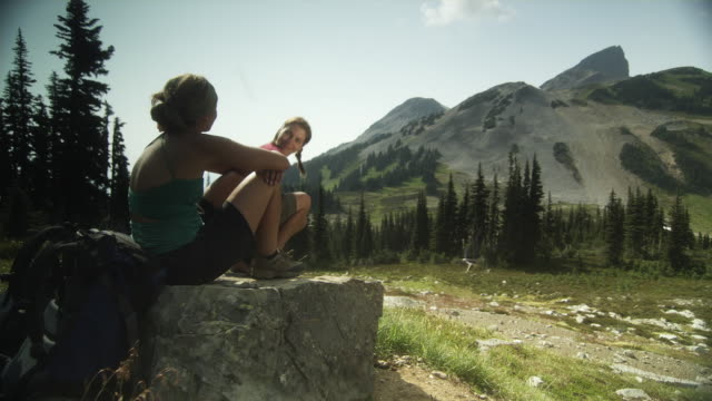 ws pan two female hikers sitting on boulder looking at view, garibaldi provincial park, squamish, british columbia, canada - garibaldi park stock videos & royalty-free footage