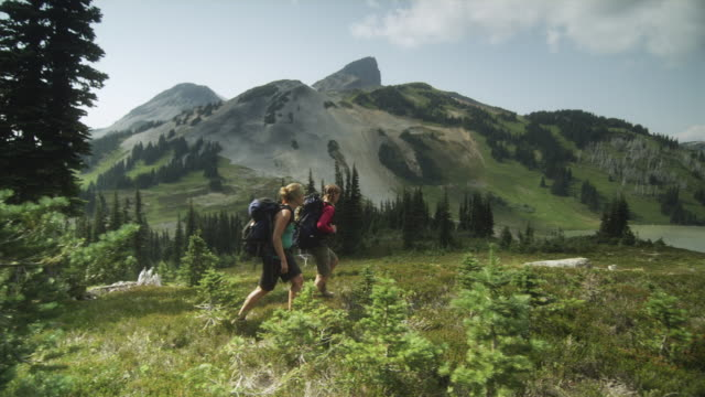 ws pan two female hikers walking through mountain landscape, garibaldi provincial park, squamish, british columbia, canada - garibaldi park stock videos & royalty-free footage