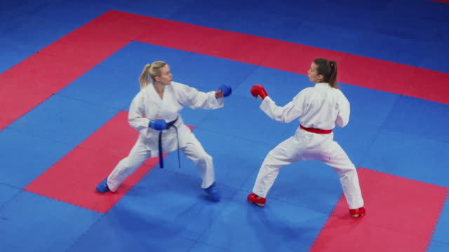 two female karate competitors fighting on the tatami - combat sport stock videos & royalty-free footage