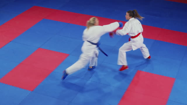 two female karate fighting on the tatami in competition - combat sport stock videos & royalty-free footage