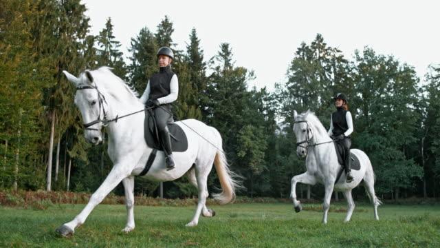 vidéos et rushes de slo mo ds deux cavaliers féminins chevauchant des chevaux blancs - équitation de loisir