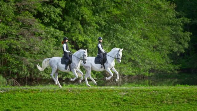 湖で馬に乗っている slo mo ts 2 人の女性ライダー - 乗馬点の映像素材/bロール
