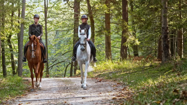pan two female riders talking on a horseback ride in forest - horseback riding stock videos & royalty-free footage