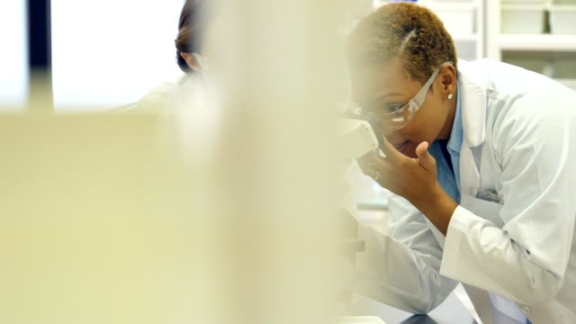 Two female scientists use microscope in a laboratory