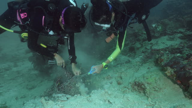 two female scuba divers cutting fishing net from coral reef - aqualung diving equipment stock videos & royalty-free footage