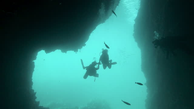 two female scuba divers descending into underwater cave holding hands - holding hands stock videos & royalty-free footage