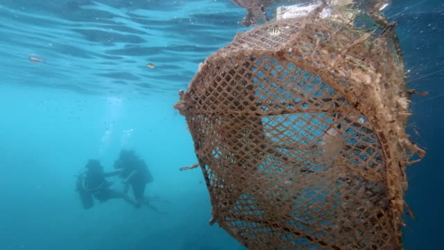 two female scuba divers swimming near ghost net pollution in the sea - fishing net stock videos & royalty-free footage