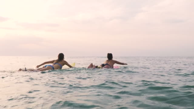 stockvideo's en b-roll-footage met two female surfers paddling out in bikinis on surfboards in the ocean at sunset in southern france - op de buik liggen