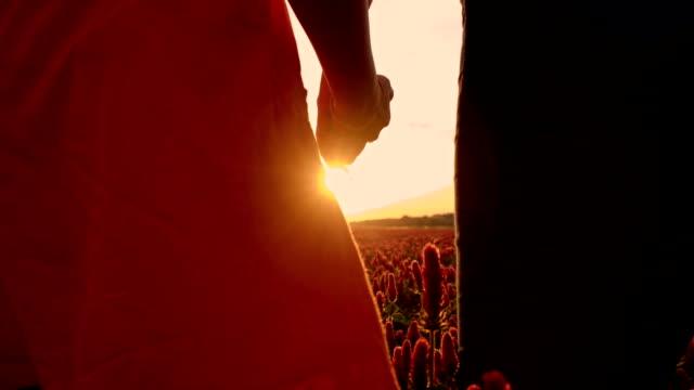 SLO MO 2 つを持つ女性の手に夕日