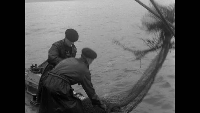 two fisherman work on a small fishing boat off uk coast; 1956 - 1956 stock videos & royalty-free footage