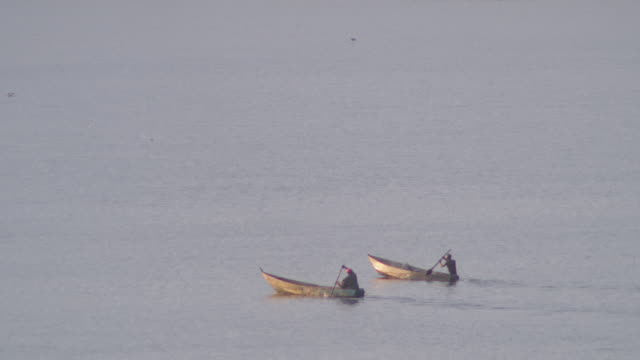 ws two fishing canoes on lake / buikwe, uganda - recreational boat stock videos & royalty-free footage