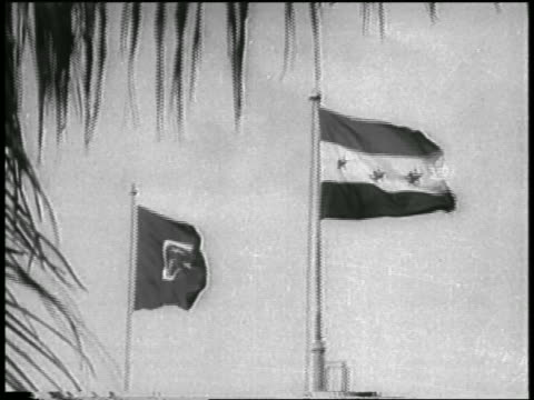 stockvideo's en b-roll-footage met two flags blowing in wind / cairo / formation of united arab republic - var