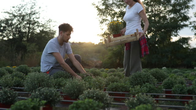 two florist working in flower garden - centro per il giardinaggio video stock e b–roll