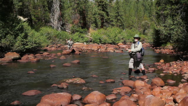 two fly fishermen practice casting on a river - fishing line stock videos & royalty-free footage