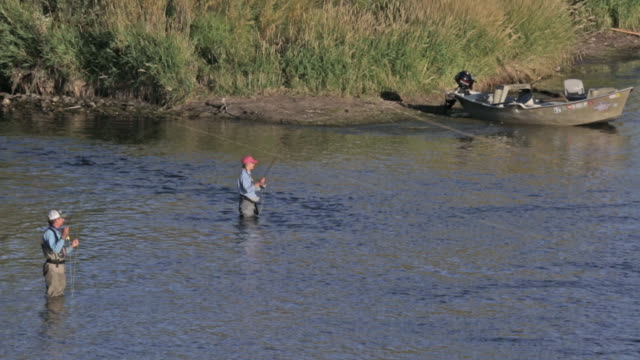 two fly fisherpeople wade and fish on the snake river in idaho - snake river stock videos & royalty-free footage