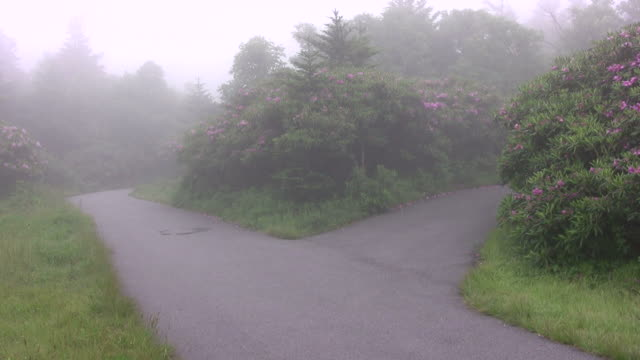 two foggy roads hd - fork stock videos & royalty-free footage