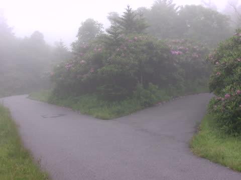Two foggy roads NTSC