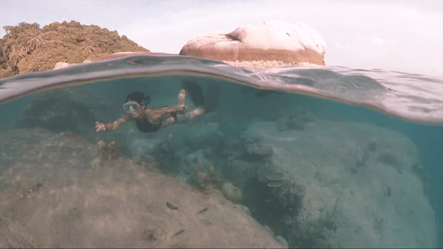 two free divers swimming underwater above coral reef - swimming stock videos & royalty-free footage