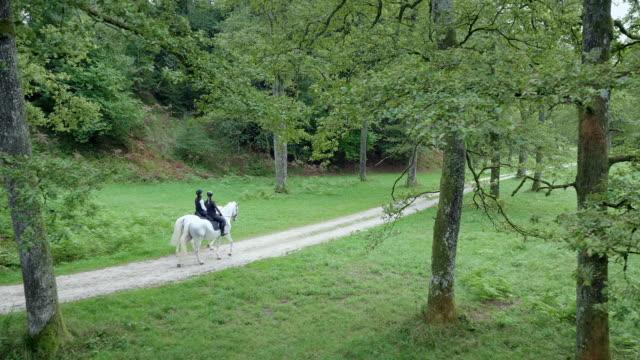 田舎道で白い馬に乗っている2人の友人 - 乗馬点の映像素材/bロール